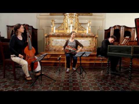 LA BELLE VIELLEUSE // Virtuoso Hurdy Gurdy in the 18th c. France - Ensemble Danguy & Tobie Miller
